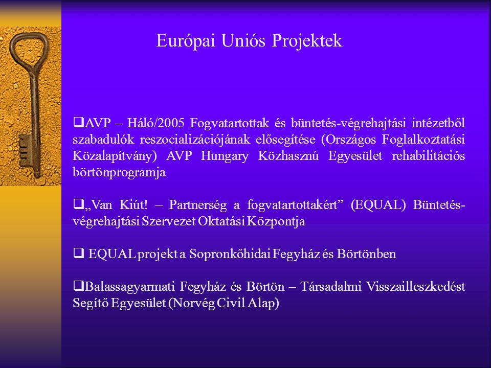"""Európai Uniós Projektek  AVP – Háló/2005 Fogvatartottak és büntetés-végrehajtási intézetből szabadulók reszocializációjának elősegítése (Országos Foglalkoztatási Közalapítvány) AVP Hungary Közhasznú Egyesület rehabilitációs börtönprogramja  """"Van Kiút."""
