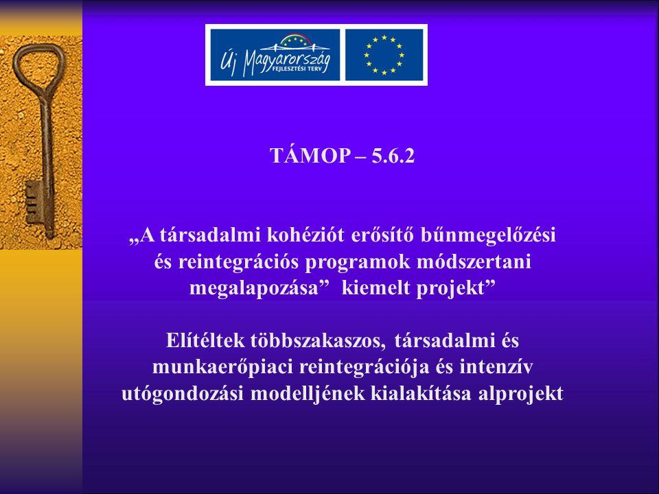 """TÁMOP – 5.6.2 """"A társadalmi kohéziót erősítő bűnmegelőzési és reintegrációs programok módszertani megalapozása kiemelt projekt Elítéltek többszakaszos, társadalmi és munkaerőpiaci reintegrációja és intenzív utógondozási modelljének kialakítása alprojekt"""