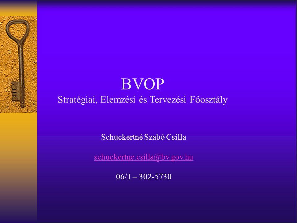 BVOP Stratégiai, Elemzési és Tervezési Főosztály Schuckertné Szabó Csilla schuckertne.csilla@bv.gov.hu 06/1 – 302-5730