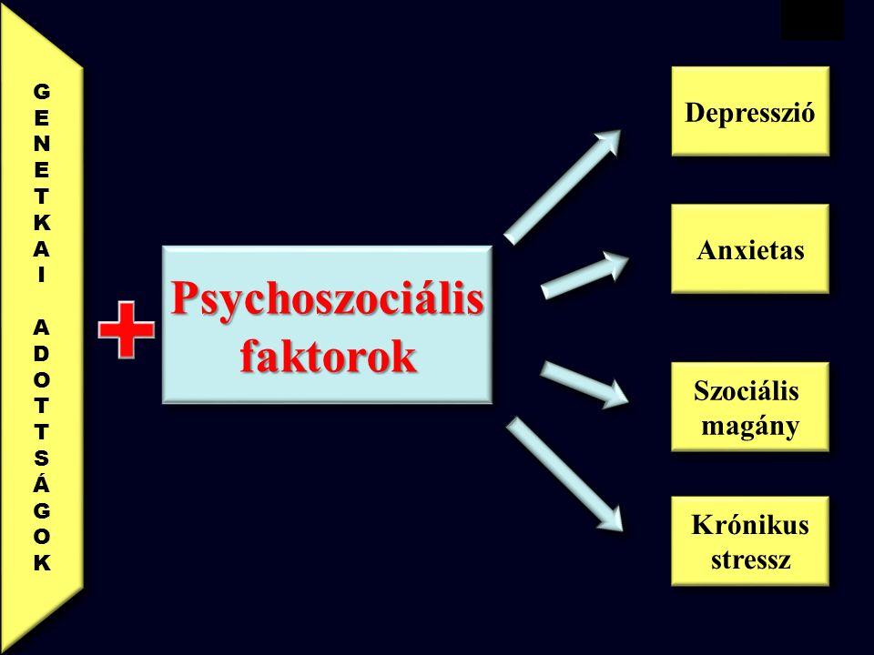 VBWG PsychoszociálisfaktorokPsychoszociálisfaktorok Krónikus stressz Krónikus stressz Szociális magány Szociális magány Anxietas Depresszió GENETKAIADOTTSÁGOK GENETKAIADOTTSÁGOK GENETKAIADOTTSÁGOK GENETKAIADOTTSÁGOK
