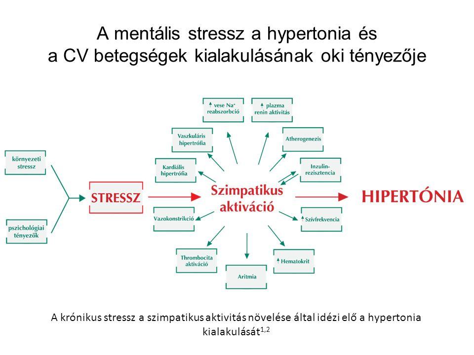 A mentális stressz a hypertonia és a CV betegségek kialakulásának oki tényezője A krónikus stressz a szimpatikus aktivitás növelése által idézi elő a hypertonia kialakulását 1,2