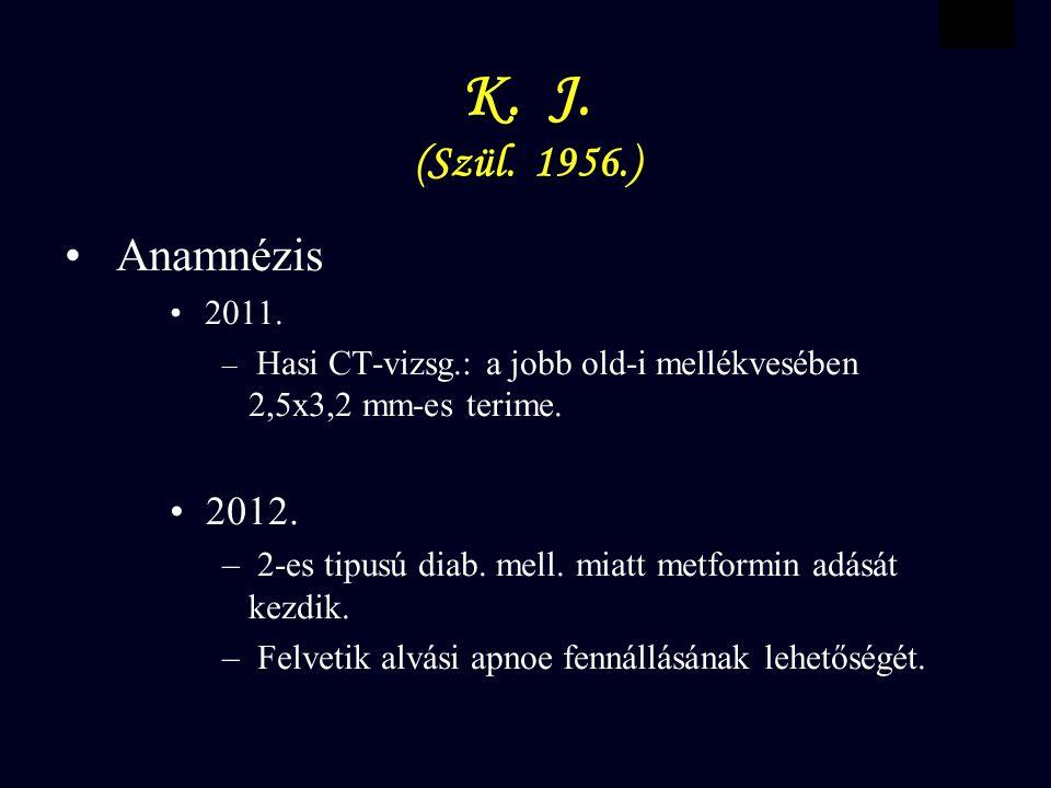 VBWG K.J. (Szül. 1956.) Anamnézis 2011.