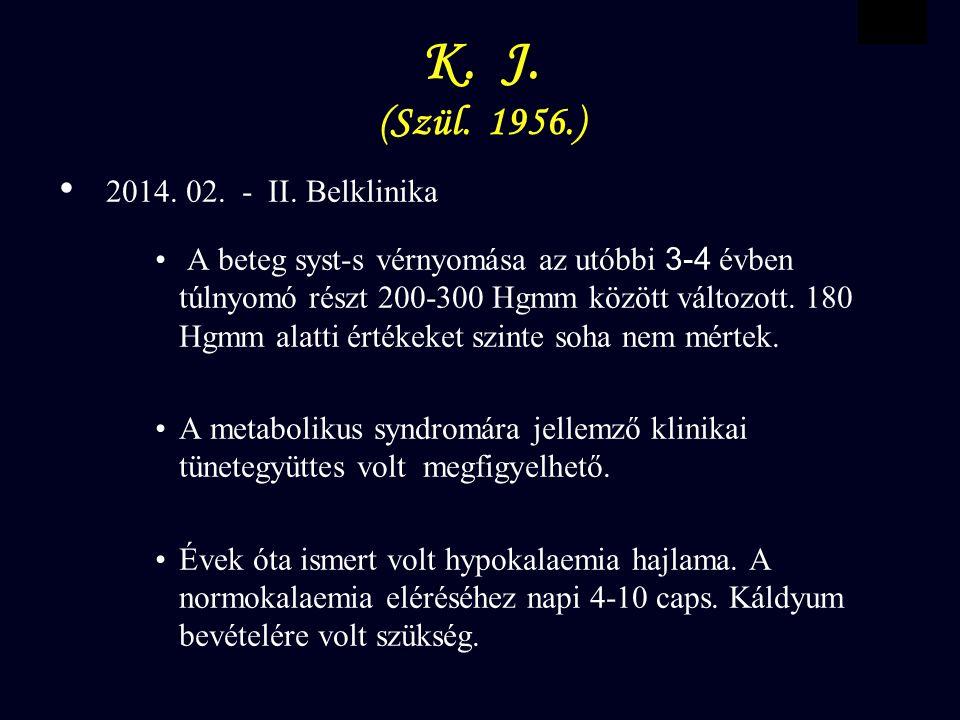 VBWG K.J. (Szül. 1956.) 2014. 02. - II.