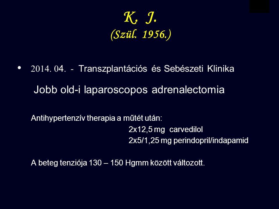 VBWG K.J. (Szül. 1956.) 2014. 0 4.