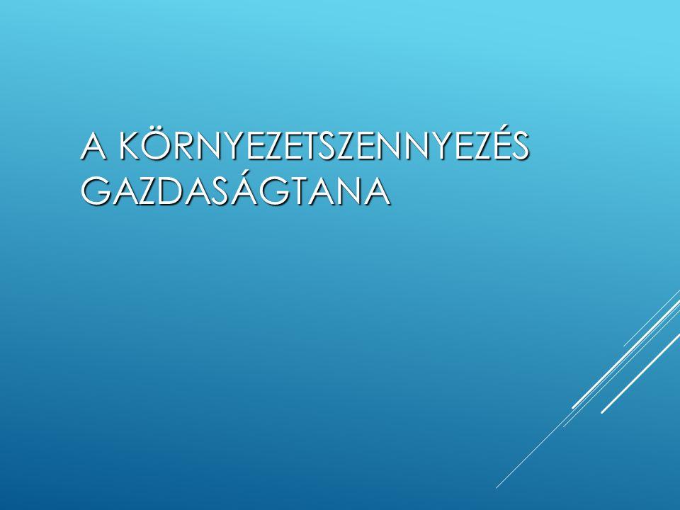 HASZON ÁTVITEL  egy konkrét értékelési módszer eredményeit használjuk fel az eredetitől (időben vagy térben) eltérő helyzetre, amely a lehető legnagyobb mértékben hasonlít az eredetihez  számos típusa létezik  Mo.: flóra és fauna változásának értékelése a Szigetközben a BNV megépítése (és a Duna elterelése) miatt (alap: osztrák fizetési hajlandóság vizsgálat) (Kerekes et al., 1998);