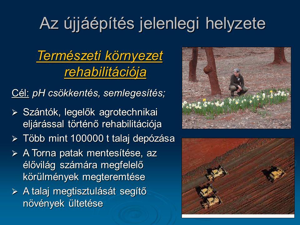13 Az újjáépítés jelenlegi helyzete Természeti környezet rehabilitációja Cél: pH csökkentés, semlegesítés;  Szántók, legelők agrotechnikai eljárással történő rehabilitációja  Több mint 100000 t talaj depózása  A Torna patak mentesítése, az élővilág számára megfelelő körülmények megteremtése  A talaj megtisztulását segítő növények ültetése