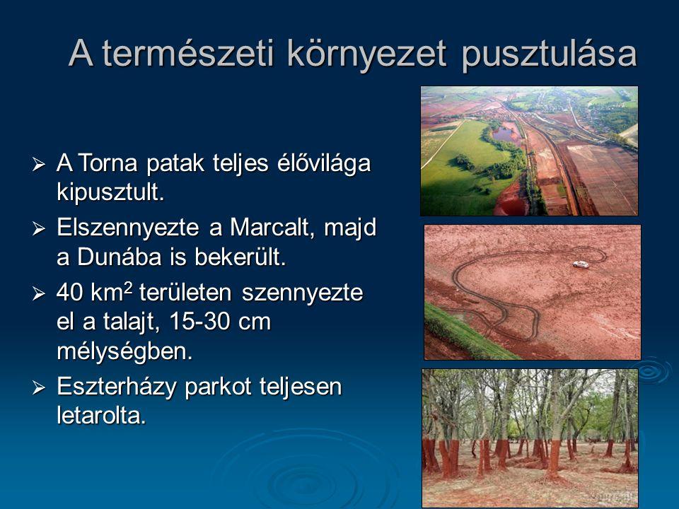8 A természeti környezet pusztulása  A Torna patak teljes élővilága kipusztult.  Elszennyezte a Marcalt, majd a Dunába is bekerült.  40 km 2 terüle