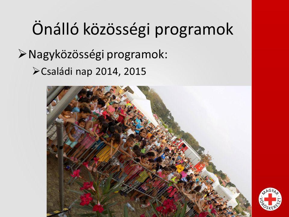 Önálló közösségi programok  Nagyközösségi programok:  Családi nap 2014, 2015