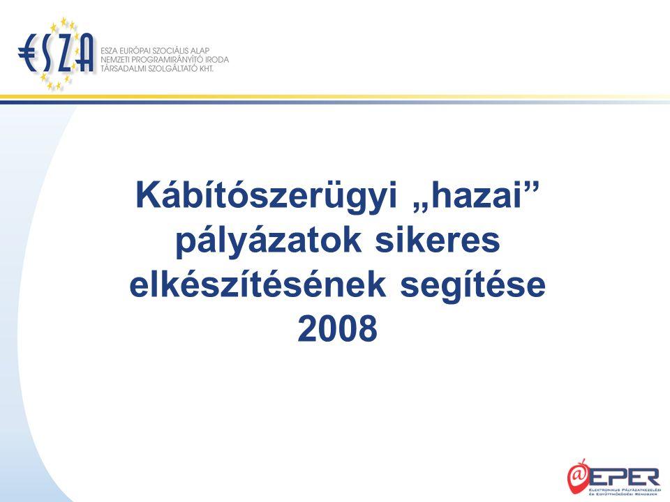 """Kábítószerügyi """"hazai"""" pályázatok sikeres elkészítésének segítése 2008"""