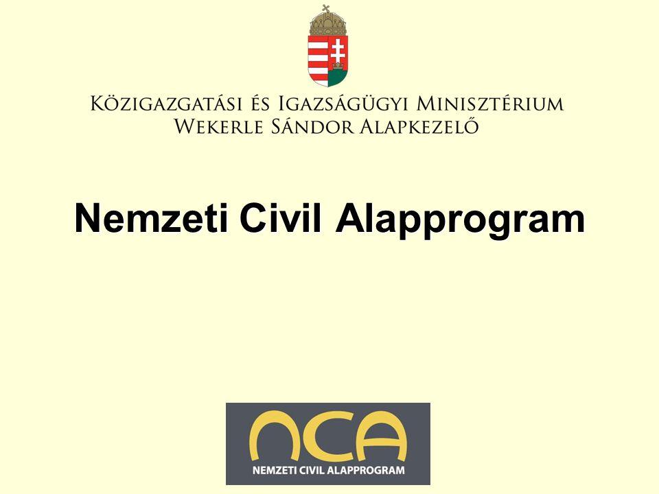 2011. január 27. Nemzeti Civil Alapprogram
