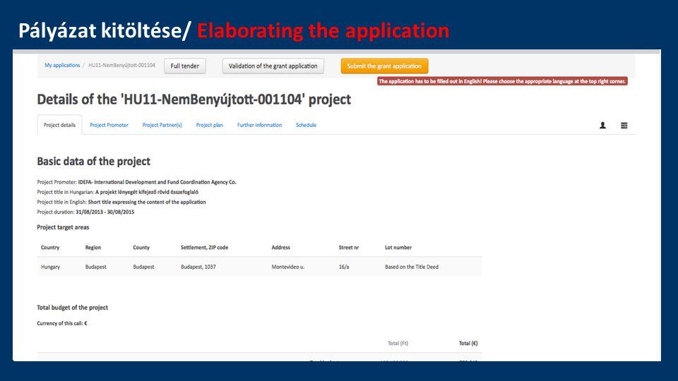 Pályázat kitöltése/ Elaborating the application