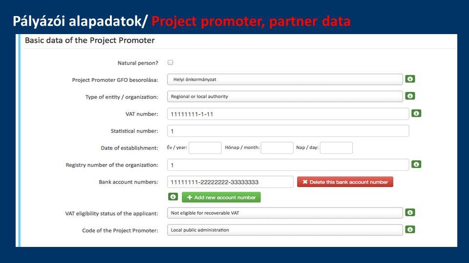 Pályázói alapadatok/ Project promoter, partner data