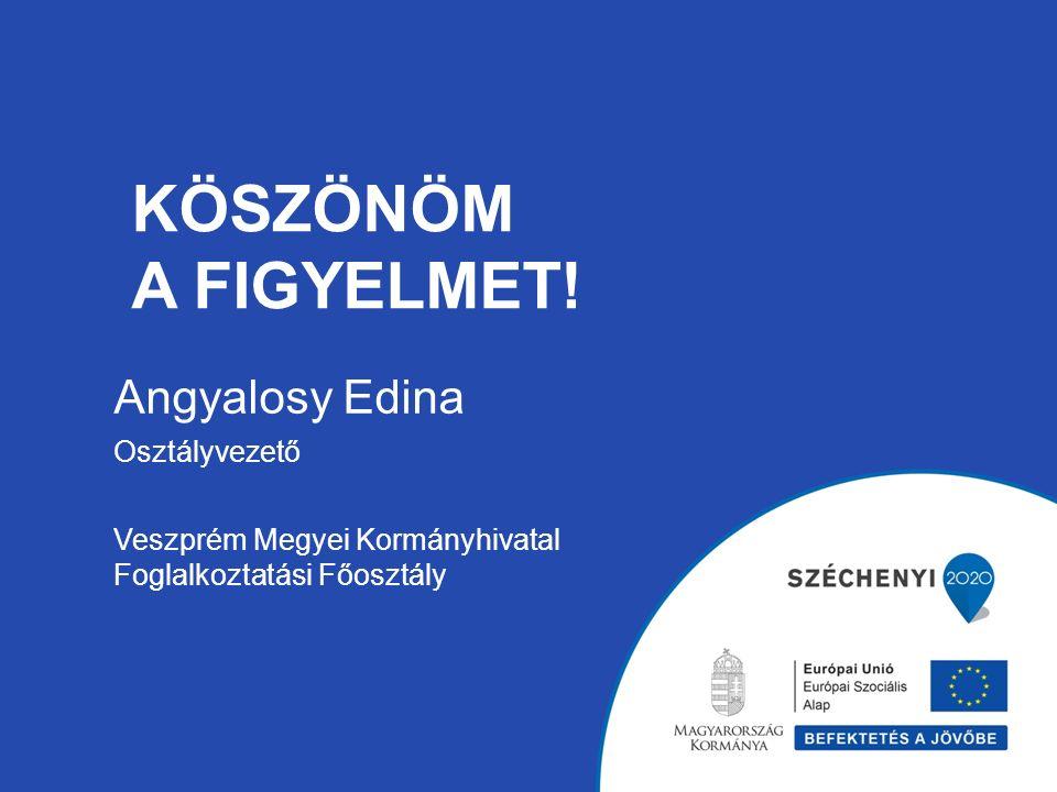 KÖSZÖNÖM A FIGYELMET! Angyalosy Edina Osztályvezető Veszprém Megyei Kormányhivatal Foglalkoztatási Főosztály