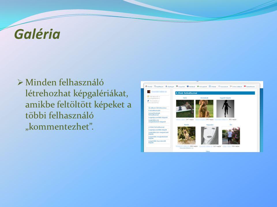 """Galéria  Minden felhasználó létrehozhat képgalériákat, amikbe feltöltött képeket a többi felhasználó """"kommentezhet""""."""