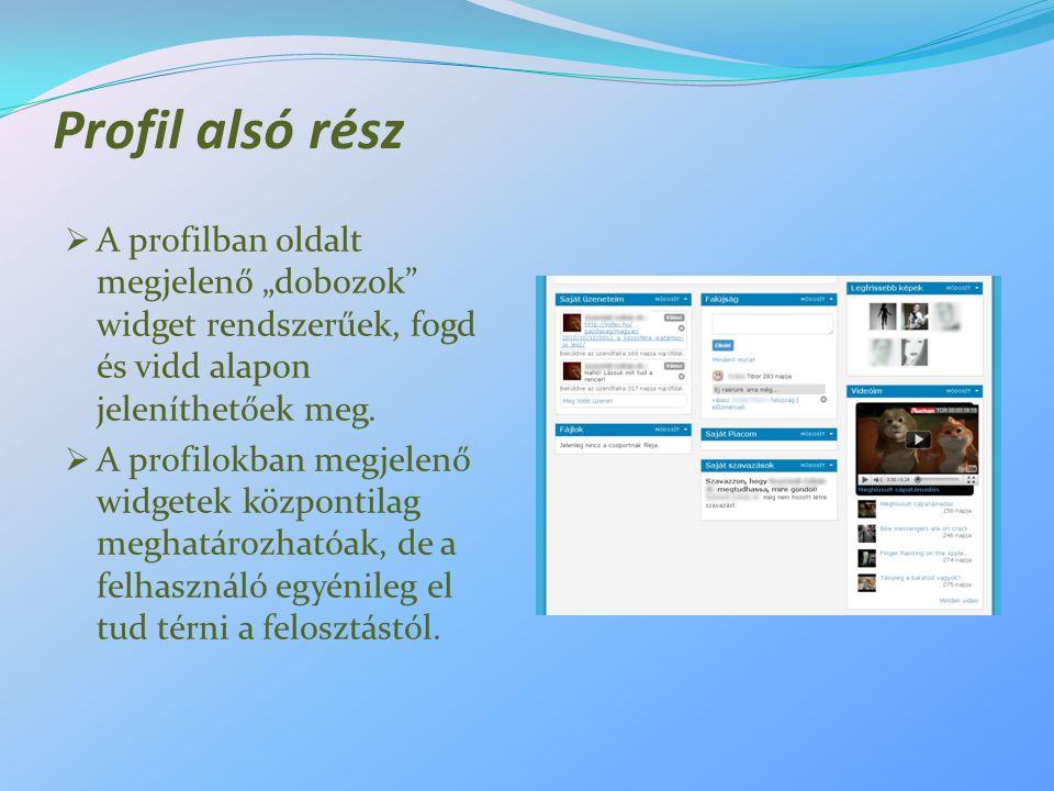 """Profil alsó rész  A profilban oldalt megjelenő """"dobozok"""" widget rendszerűek, fogd és vidd alapon jeleníthetőek meg.  A profilokban megjelenő widgete"""