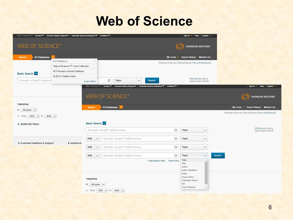 6 Web of Science