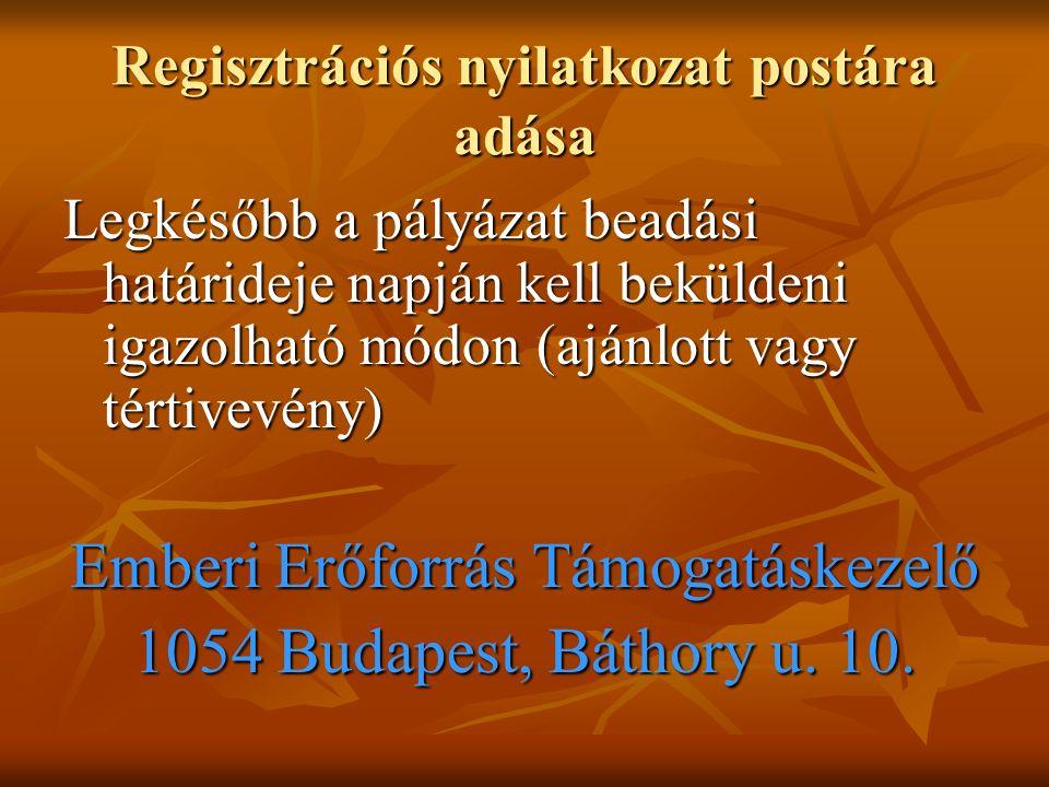 Regisztrációs nyilatkozat postára adása Legkésőbb a pályázat beadási határideje napján kell beküldeni igazolható módon (ajánlott vagy tértivevény) Emberi Erőforrás Támogatáskezelő 1054 Budapest, Báthory u.