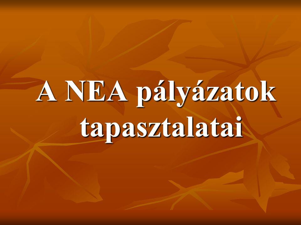 A NEA pályázatok tapasztalatai