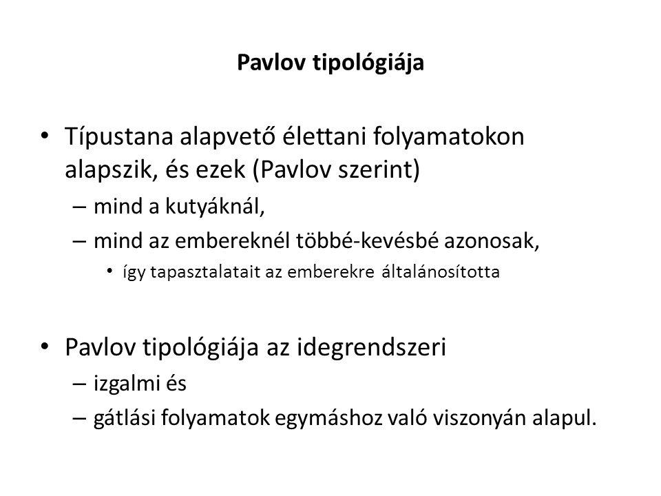 Pavlov tipológiája Típustana alapvető élettani folyamatokon alapszik, és ezek (Pavlov szerint) – mind a kutyáknál, – mind az embereknél többé-kevésbé azonosak, így tapasztalatait az emberekre általánosította Pavlov tipológiája az idegrendszeri – izgalmi és – gátlási folyamatok egymáshoz való viszonyán alapul.
