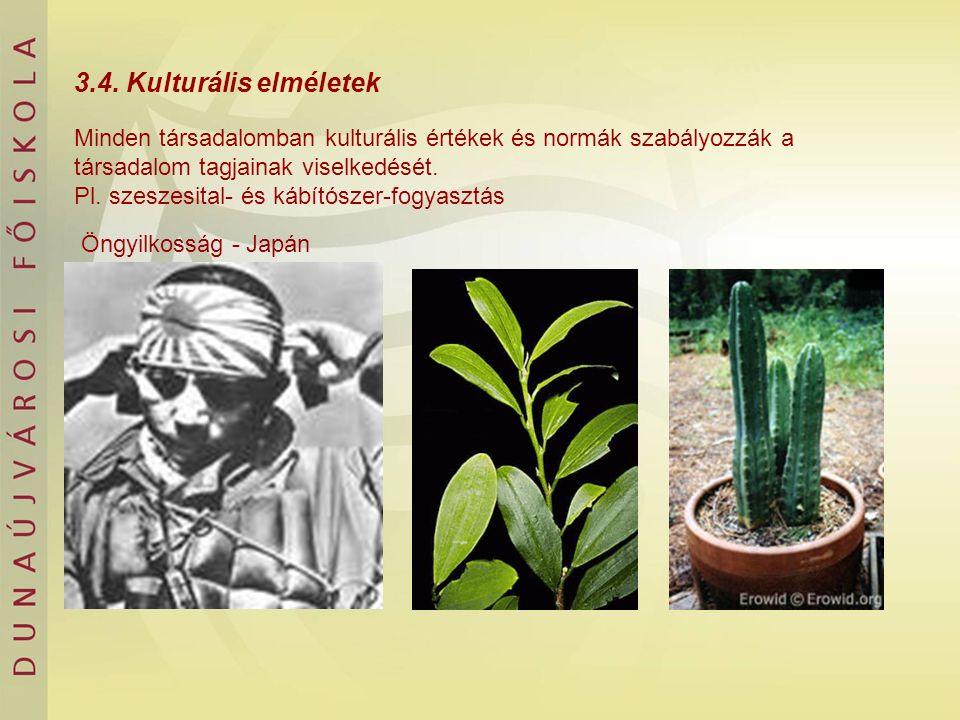 3.4. Kulturális elméletek Minden társadalomban kulturális értékek és normák szabályozzák a társadalom tagjainak viselkedését. Pl. szeszesital- és kábí