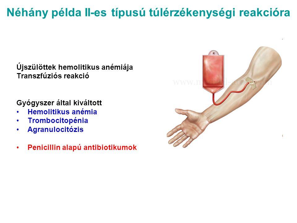 Néhány példa II-es típusú túlérzékenységi reakcióra Újszülöttek hemolitikus anémiája Transzfúziós reakció Gyógyszer által kiváltott Hemolitikus anémia Trombocitopénia Agranulocitózis Penicillin alapú antibiotikumok