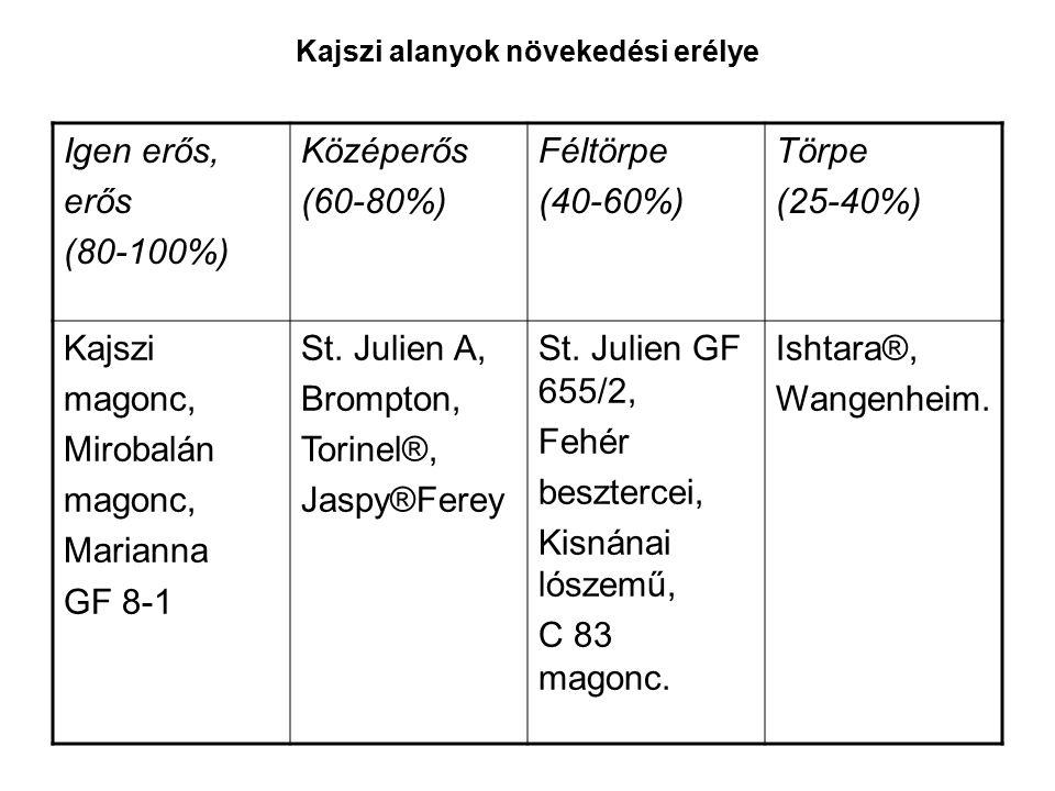 Kajszi alanyok növekedési erélye Igen erős, erős (80-100%) Középerős (60-80%) Féltörpe (40-60%) Törpe (25-40%) Kajszi magonc, Mirobalán magonc, Marianna GF 8-1 St.