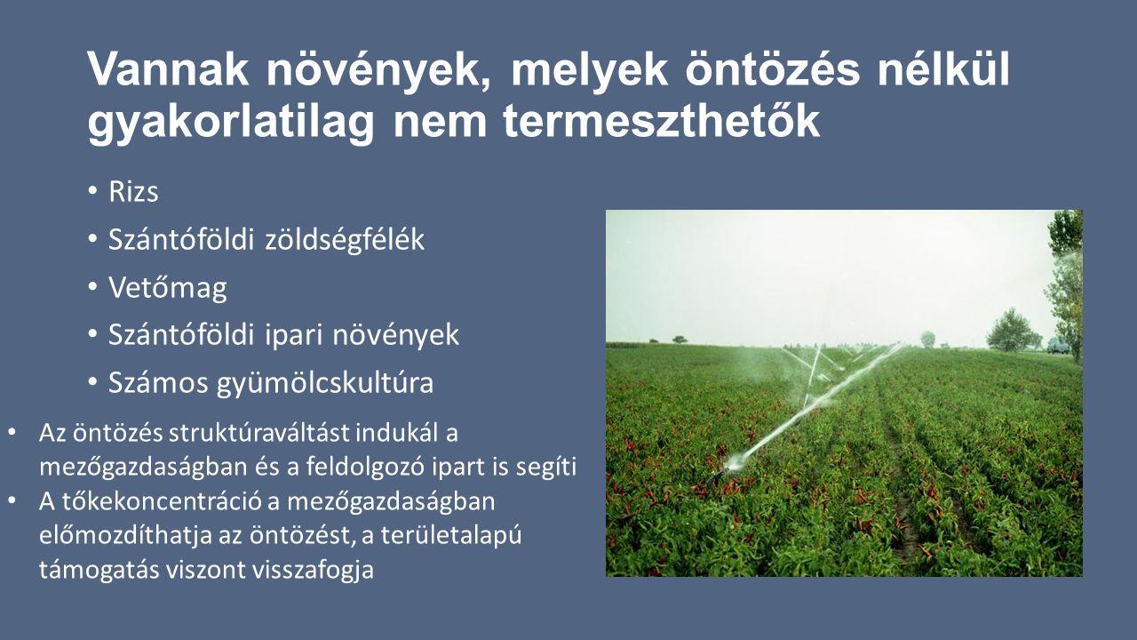 Vannak növények, melyek öntözés nélkül gyakorlatilag nem termeszthetők Rizs Szántóföldi zöldségfélék Vetőmag Szántóföldi ipari növények Számos gyümölc