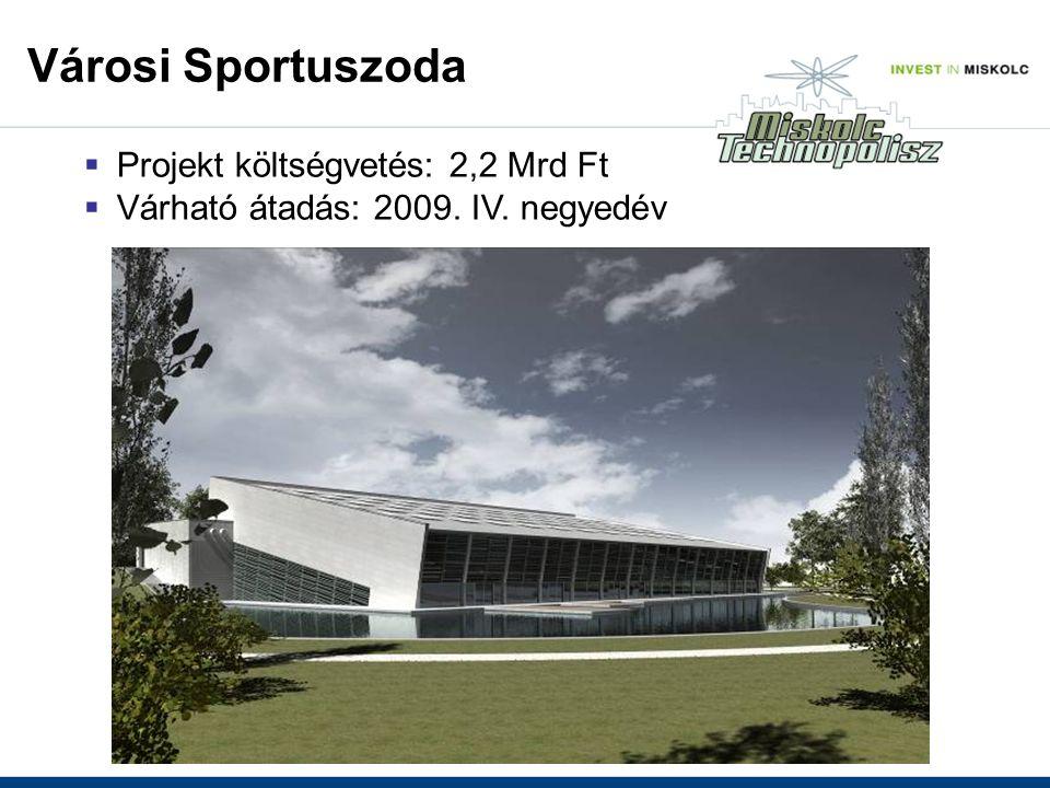  Projekt költségvetés: 2,2 Mrd Ft  Várható átadás: 2009. IV. negyedév Városi Sportuszoda