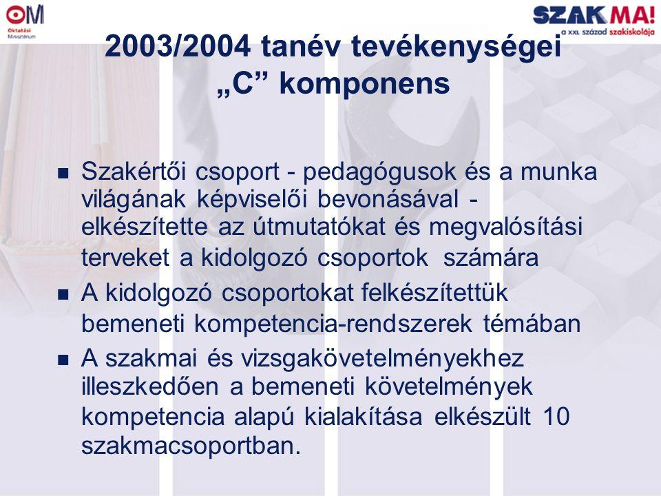 """2003/2004 tanév tevékenységei """"C"""" komponens n Szakértői csoport - pedagógusok és a munka világának képviselői bevonásával - elkészítette az útmutatóka"""