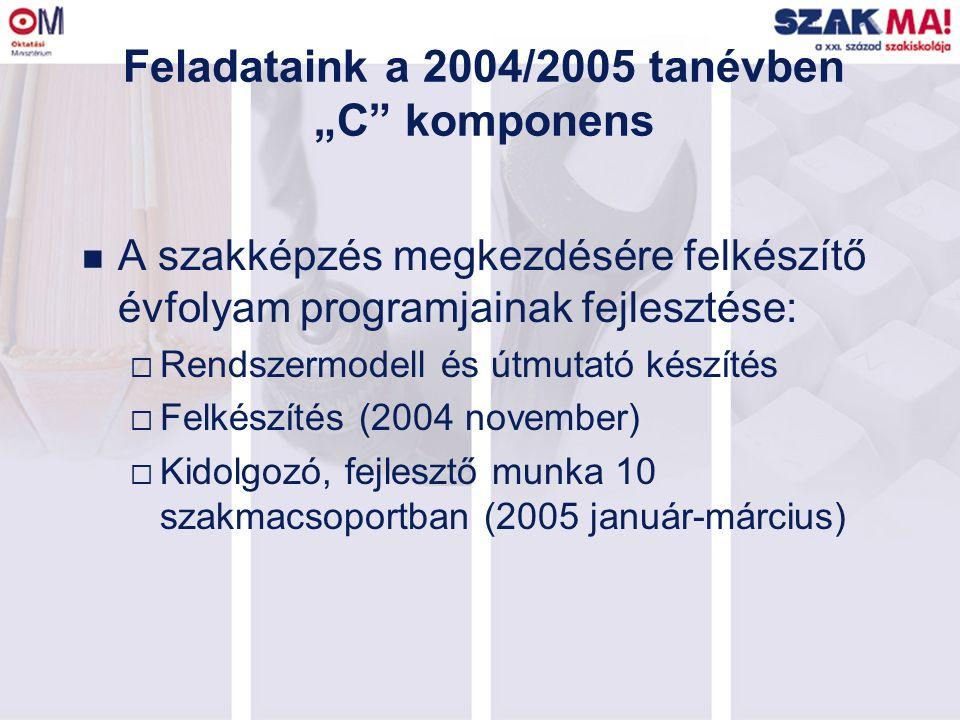 """Feladataink a 2004/2005 tanévben """"C"""" komponens n A szakképzés megkezdésére felkészítő évfolyam programjainak fejlesztése:  Rendszermodell és útmutató"""