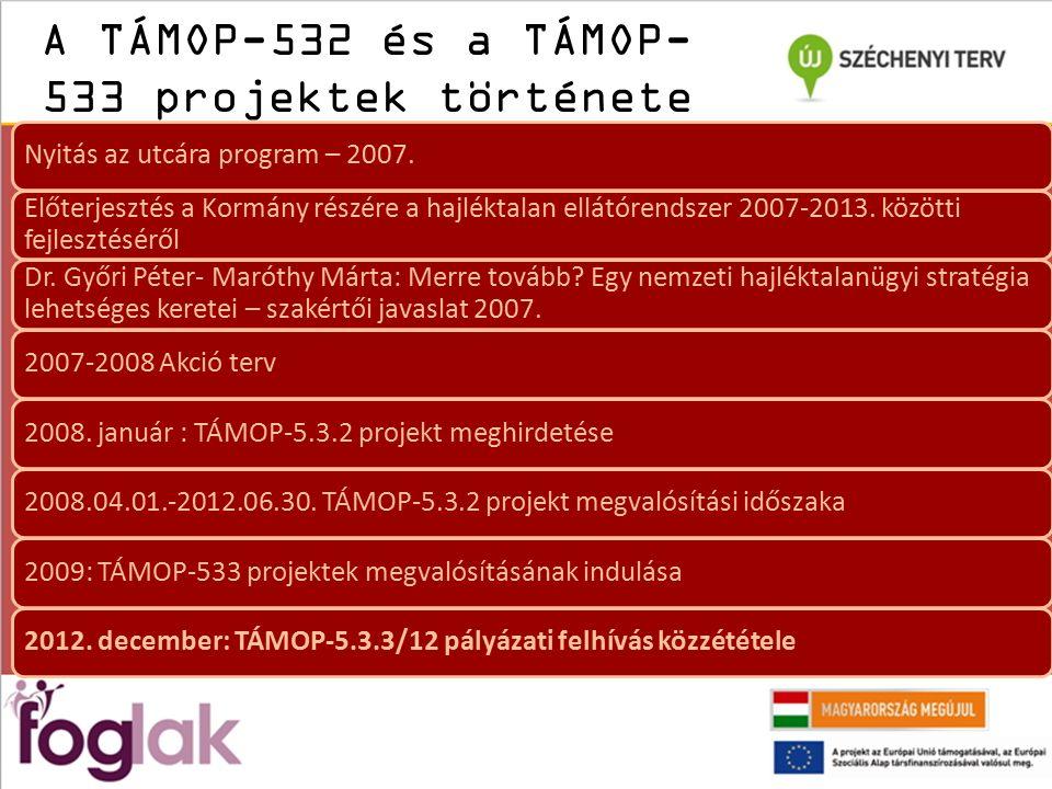 A TÁMOP-532 és a TÁMOP- 533 projektek története Nyitás az utcára program – 2007.