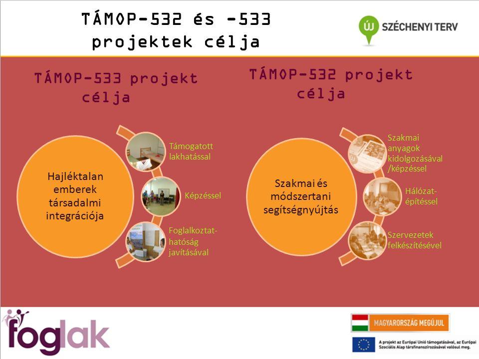 TÁMOP-532 és -533 projektek célja TÁMOP-533 projekt célja Hajléktalan emberek társadalmi integrációja Támogatott lakhatással Képzéssel Foglalkoztat- hatóság javításával TÁMOP-532 projekt célja Szakmai és módszertani segítségnyújtás Szakmai anyagok kidolgozásáva l/képzéssel Hálózat- építéssel Szervezetek felkészítéséve l