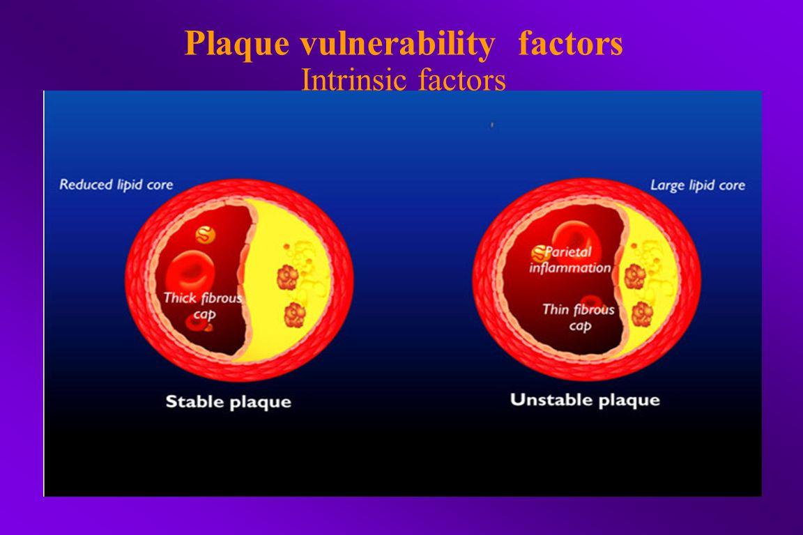 Plaque vulnerability factors Intrinsic factors