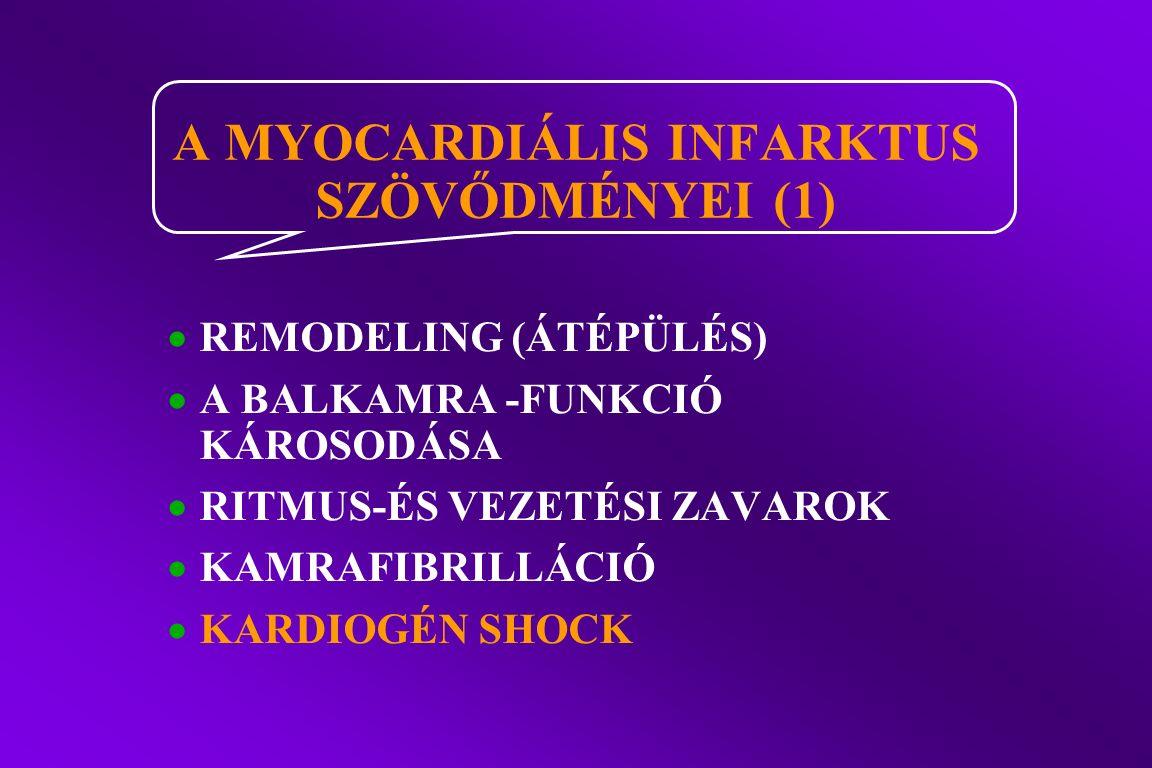  REMODELING (ÁTÉPÜLÉS)  A BALKAMRA -FUNKCIÓ KÁROSODÁSA  RITMUS-ÉS VEZETÉSI ZAVAROK  KAMRAFIBRILLÁCIÓ  KARDIOGÉN SHOCK A MYOCARDIÁLIS INFARKTUS SZÖV Ő DMÉNYEI (1)