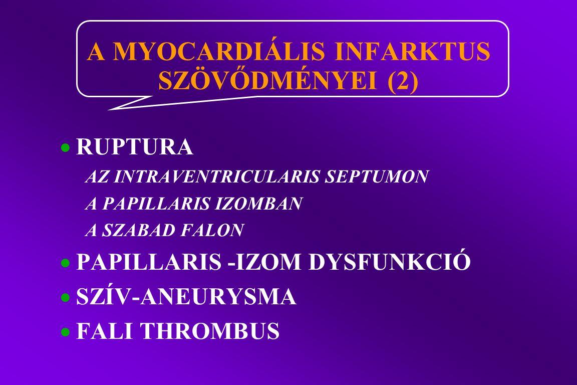  RUPTURA AZ INTRAVENTRICULARIS SEPTUMON A PAPILLARIS IZOMBAN A SZABAD FALON  PAPILLARIS -IZOM DYSFUNKCIÓ  SZÍV-ANEURYSMA  FALI THROMBUS A MYOCARDIÁLIS INFARKTUS SZÖV Ő DMÉNYEI (2)