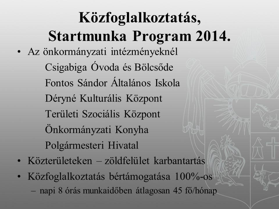 Közfoglalkoztatás, Startmunka Program 2014.