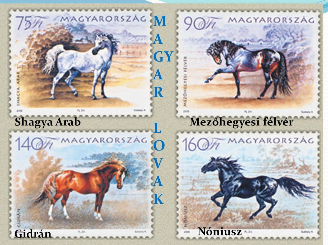 The Hucul or Carpathian is a pony or small horse breed originally from the Carpathian Mountains.