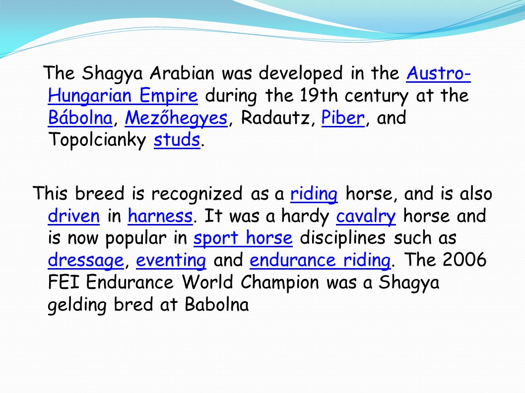 The Shagya Arabian was developed in the Austro- Hungarian Empire during the 19th century at the Bábolna, Mezőhegyes, Radautz, Piber, and Topolcianky studs.Austro- Hungarian Empire BábolnaMezőhegyesPiberstuds This breed is recognized as a riding horse, and is also driven in harness.