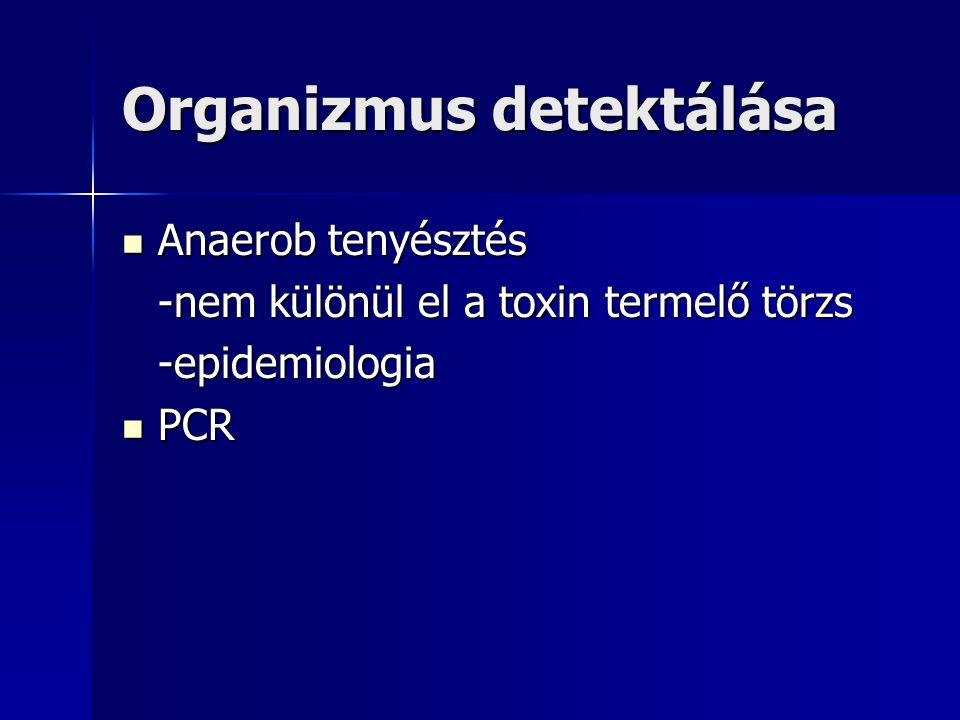 Organizmus detektálása Anaerob tenyésztés Anaerob tenyésztés -nem különül el a toxin termelő törzs -epidemiologia PCR PCR