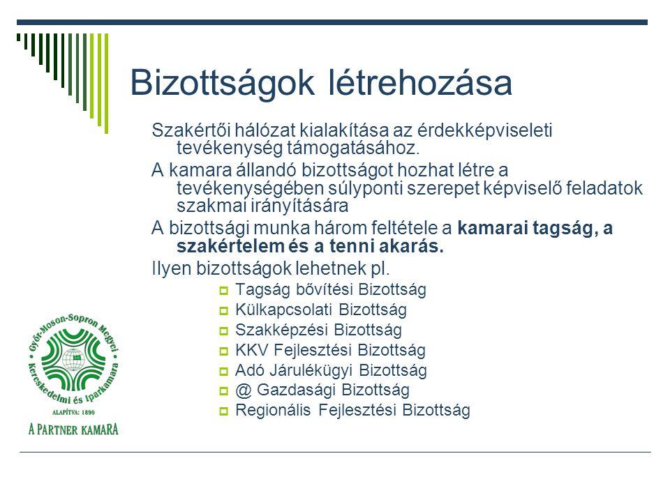 Bizottságok létrehozása Szakértői hálózat kialakítása az érdekképviseleti tevékenység támogatásához.