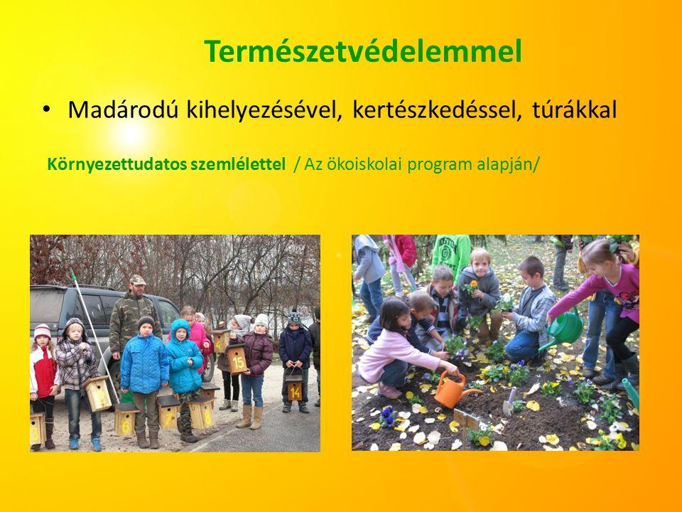 Egészséges táplálkozásra való neveléssel Gyógynövények ültetése, fogyasztása, gyümölcsök, zöldségek aszalása, egészségnapok a népszokások felelevenítésével