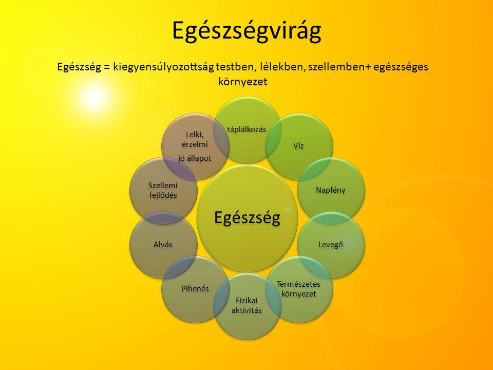 Egészségvirág Egészség táplálkozásVízNapfényLevegő Természetes környezet Fizikai aktivitás PihenésAlvás Szellemi fejlődés Lelki, érzelmi jó állapot Egészség = kiegyensúlyozottság testben, lélekben, szellemben+ egészséges környezet