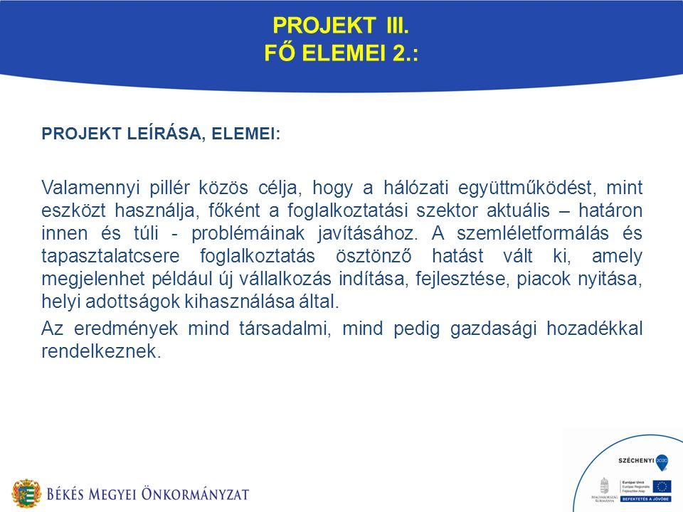 PROJEKT III. FŐ ELEMEI 2.: PROJEKT LEÍRÁSA, ELEMEI: Valamennyi pillér közös célja, hogy a hálózati együttműködést, mint eszközt használja, főként a fo