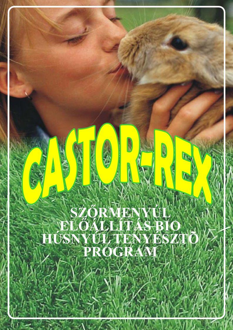 A CASTOR REX NYÚL TARTÁSÁNAK BEMUTATÁSA 4 Bevezető Az általunk kisüzemi tenyésztésbe vont nyulat rex nyúlnak nevezzük.