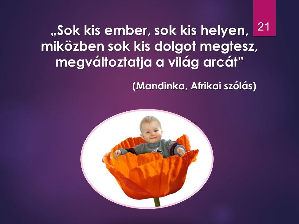 """""""Sok kis ember, sok kis helyen, miközben sok kis dolgot megtesz, megváltoztatja a világ arcát"""" (Mandinka, Afrikai szólás) 21"""