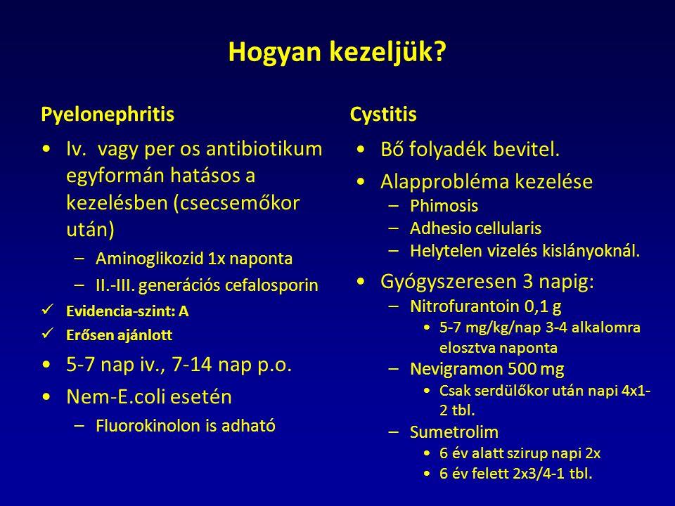 Hogyan kezeljük. Pyelonephritis Iv.