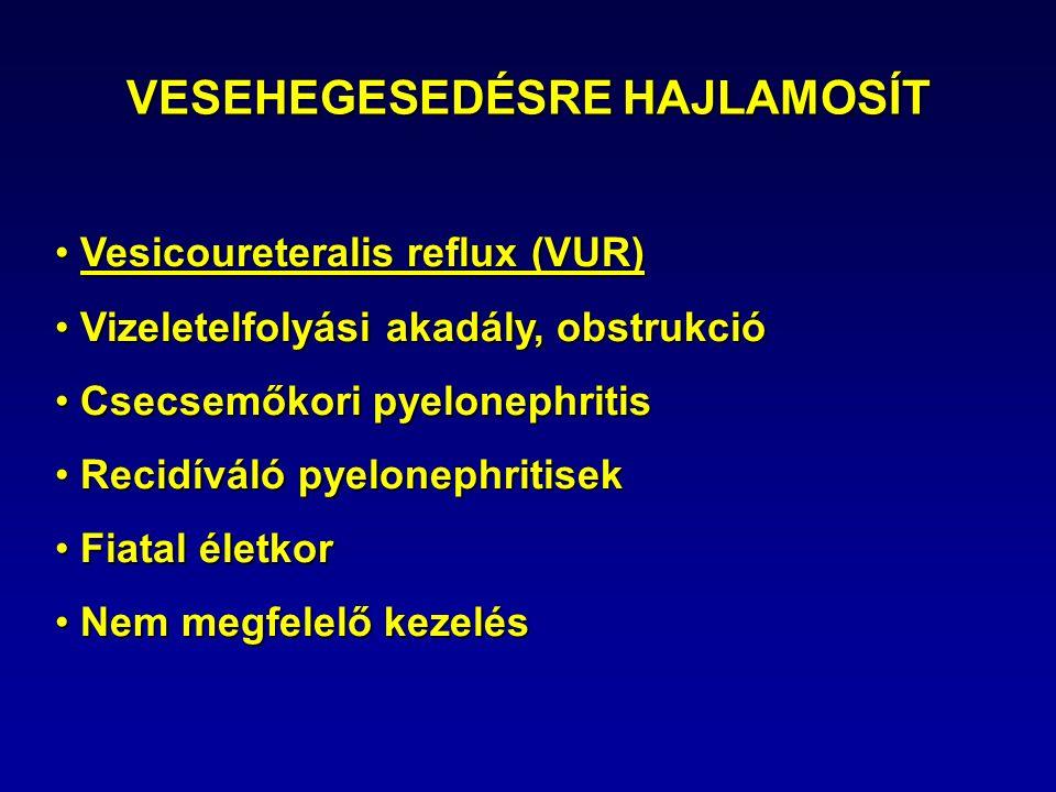 VESEHEGESEDÉSRE HAJLAMOSÍT Vesicoureteralis reflux (VUR) Vesicoureteralis reflux (VUR) Vizeletelfolyási akadály, obstrukció Vizeletelfolyási akadály, obstrukció Csecsemőkori pyelonephritis Csecsemőkori pyelonephritis Recidíváló pyelonephritisek Recidíváló pyelonephritisek Fiatal életkor Fiatal életkor Nem megfelelő kezelés Nem megfelelő kezelés