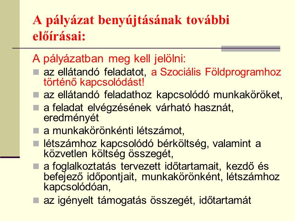 A pályázat benyújtásának további előírásai: A pályázatban meg kell jelölni: az ellátandó feladatot, a Szociális Földprogramhoz történő kapcsolódást.