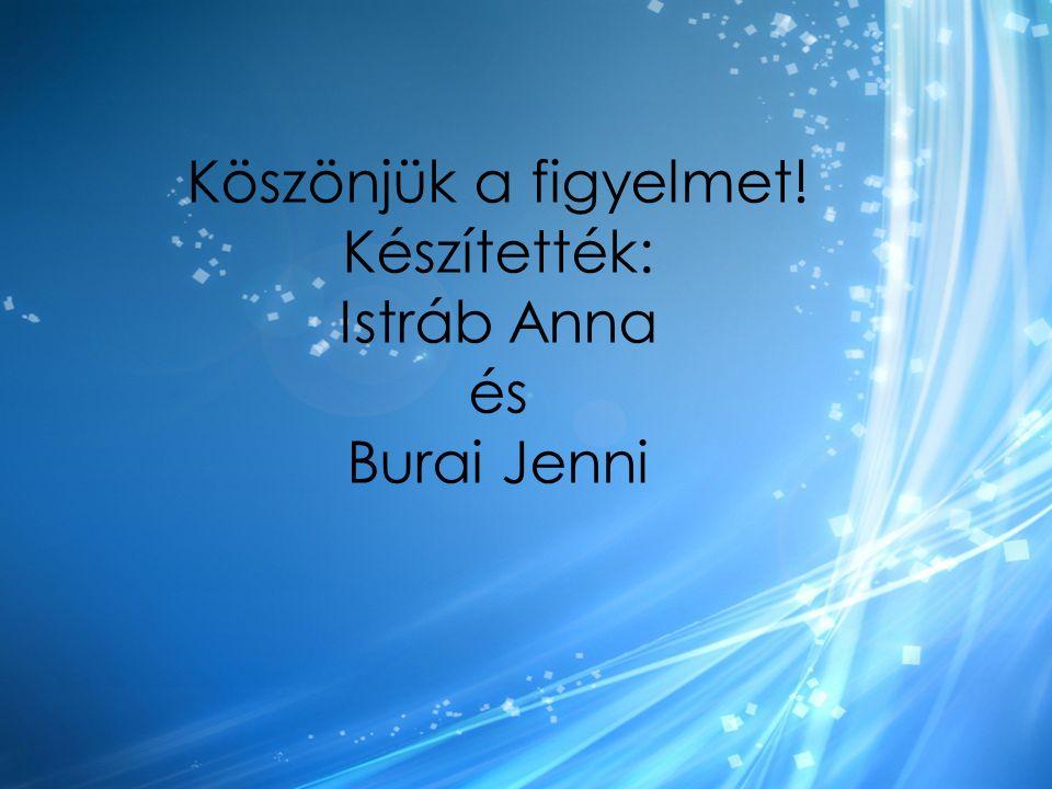 Köszönjük a figyelmet! Készítették: Istráb Anna és Burai Jenni