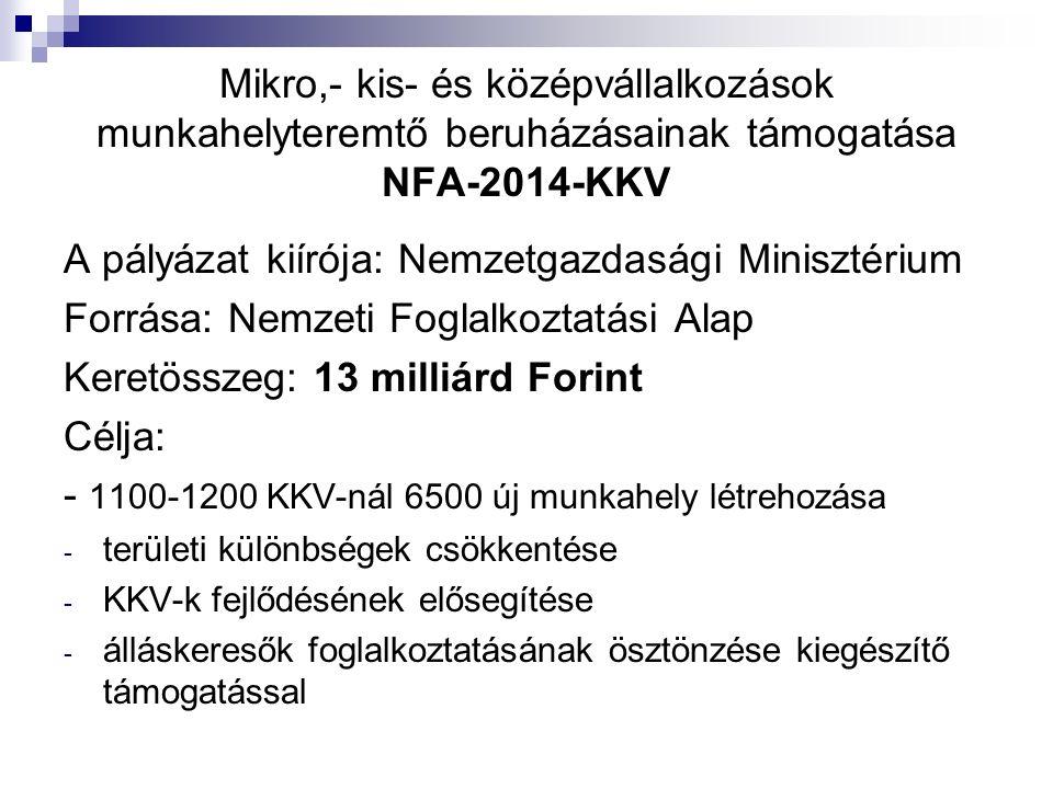 Mikro,- kis- és középvállalkozások munkahelyteremtő beruházásainak támogatása NFA-2014-KKV A pályázat kiírója: Nemzetgazdasági Minisztérium Forrása: Nemzeti Foglalkoztatási Alap Keretösszeg: 13 milliárd Forint Célja: - 1100-1200 KKV-nál 6500 új munkahely létrehozása - területi különbségek csökkentése - KKV-k fejlődésének elősegítése - álláskeresők foglalkoztatásának ösztönzése kiegészítő támogatással